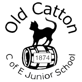 Old Catton Junior
